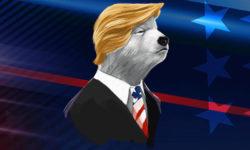 USA Presidendivalimised 2020 – Trump vs Biden €50 riskivaba panus